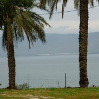 ガリラヤ湖(キネレット)