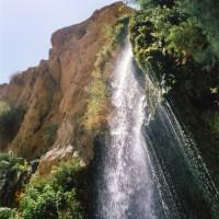 ダビデの滝(エンゲディの滝)